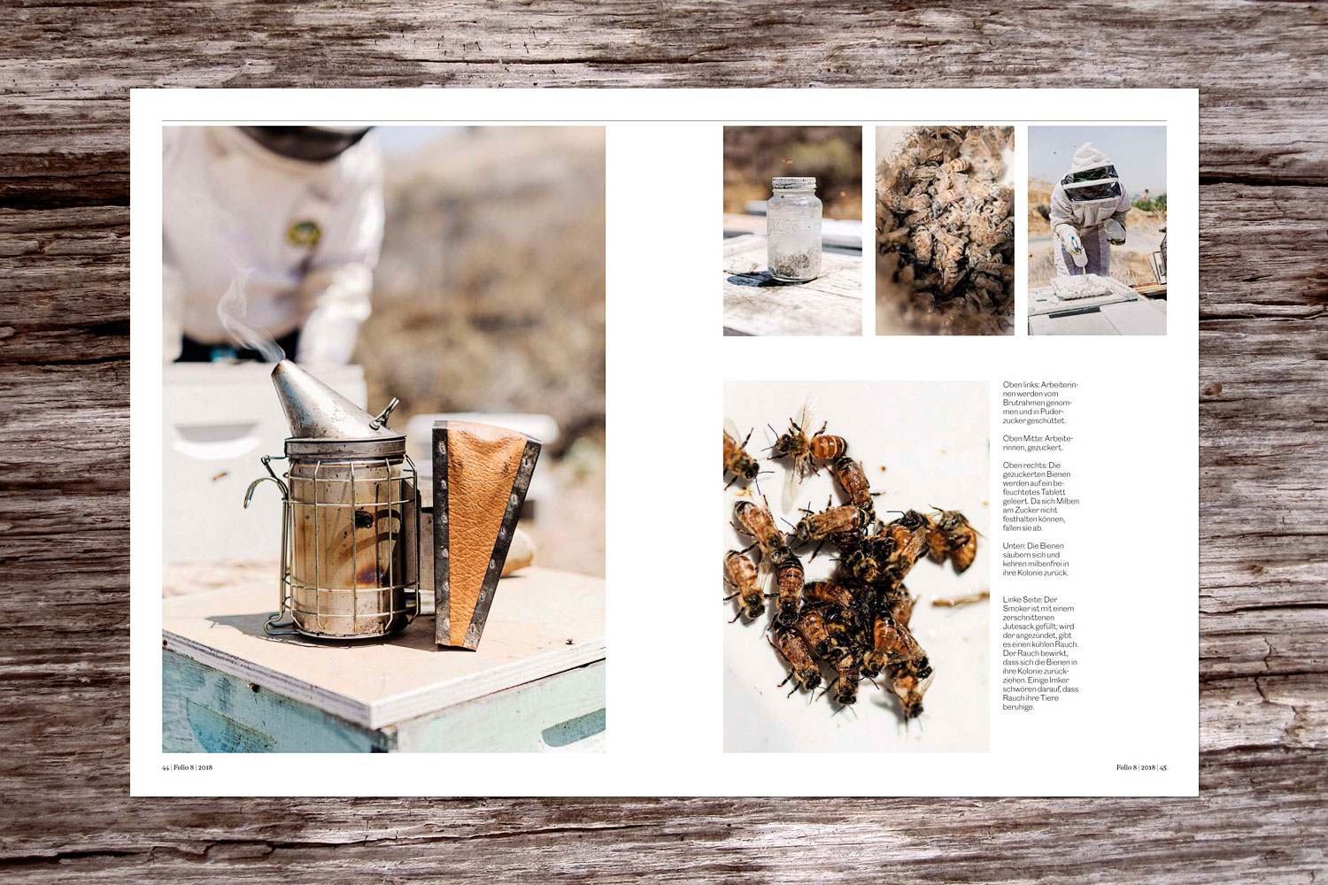 PATRICK STRATTNER PHOTOGRAPHY | TEAR SHEETS | Center for Integrative Bee Research (CIBER) / NZZ Folio